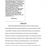 Screenshot of court filing
